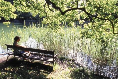 Großansicht - Frau sitzend auf einer Bank an einem Teich