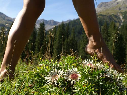 Großansicht - Barfußwanderung durchs Tiroler Kaunertal