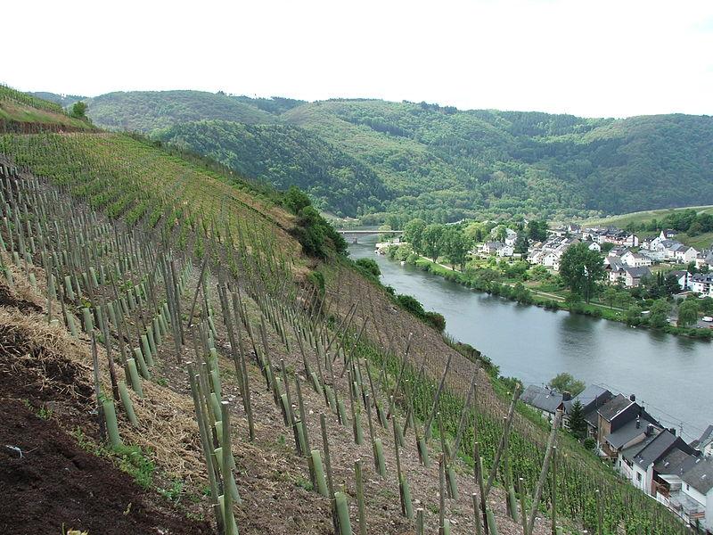 Neue Wanderwege in Deutschland