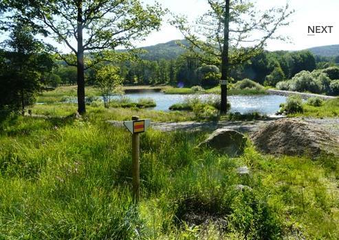 Großansicht - Perlsee im Waldmünchner Urlaubsland