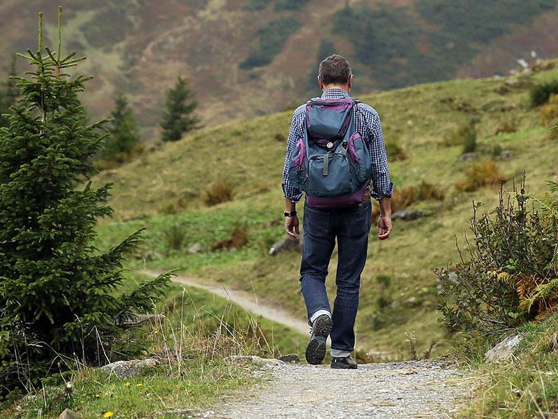 Großansicht - Wanderer: Bild von Hermann Traub auf Pixabay