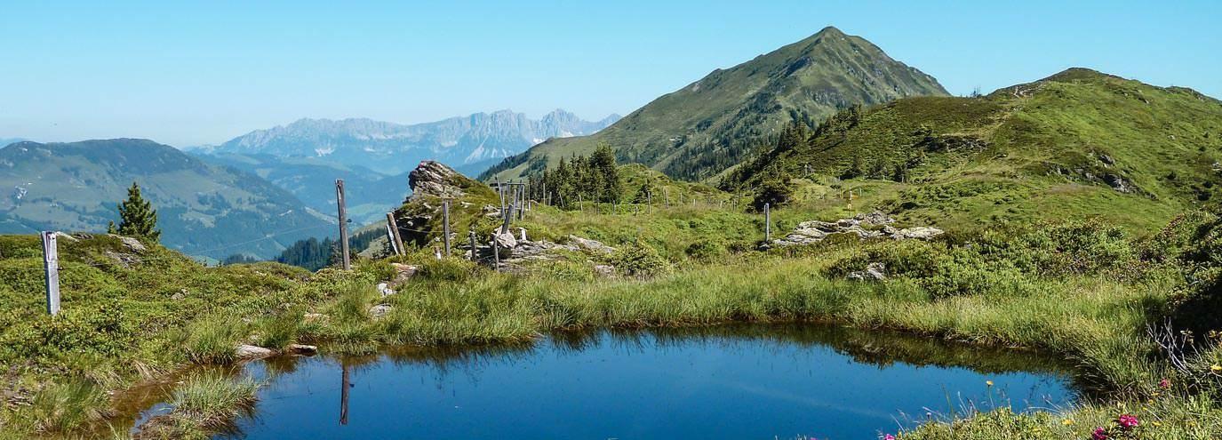 Kitzbüheler Alpen-Brixental by Peter Vonier