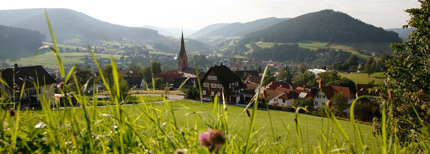 Tourismusverband Baiersbonn