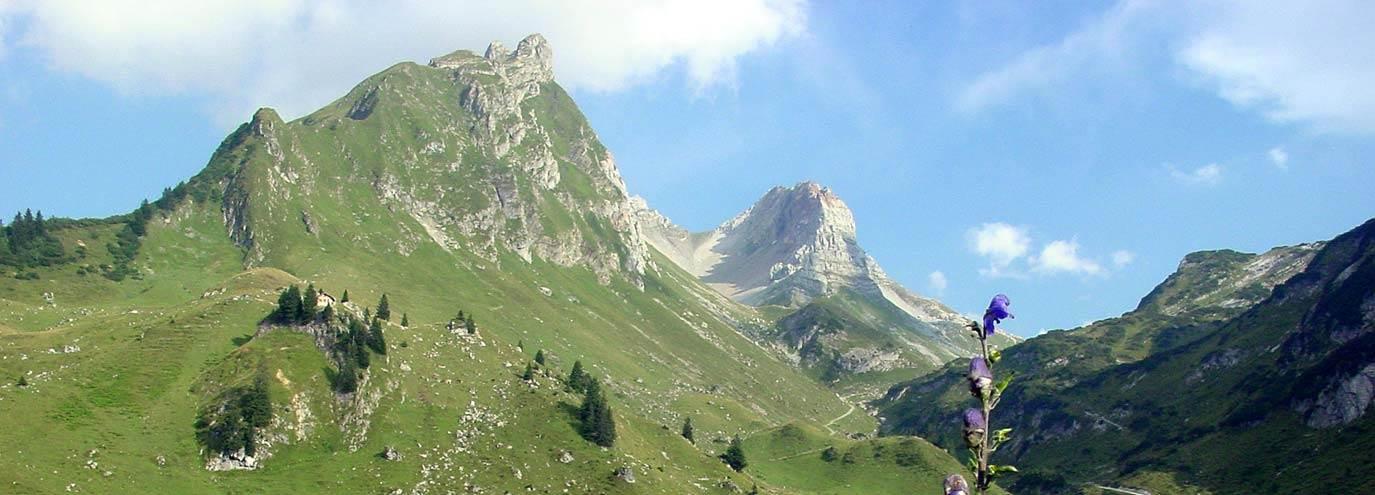 Tourismusverband Großes Walsertal