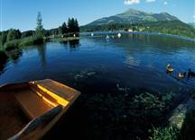 Seenlandschaft - aufgenommen in Fischaugenoptik
