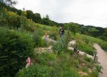 Kräutergarten Obertreichl