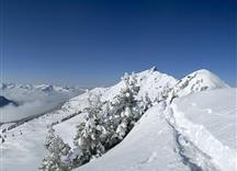 Am Gipfelgrat zum Bischof - Auracher Graben
