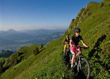 zwei Mountainbiker auf dem Weg ins Tal
