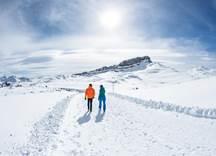 Winterwandern Gottesacker Ifen