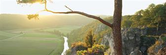 Aussicht auf Wälder und Wiesen des Altmühltals