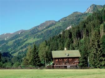 Berghütte auf einer Almwiese in den Kitzbüheler Alpen