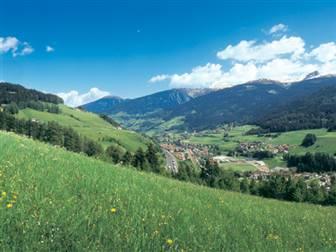 Aussicht auf die Berge und Wiesen des Tiroler Wipptals