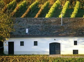 Felsweinkeller inmitter der Wachauer Weingärten