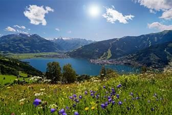 Zeller See im Sommer umramt von Bergen und blühenden Wiesen