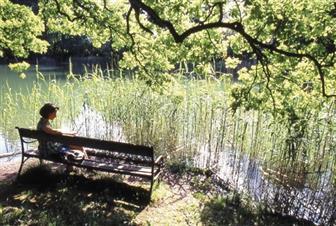 Frau sitzend auf einer Bank an einem Teich