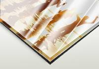 Acrylglas-Bild