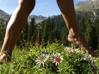Barfußwanderung durchs Tiroler Kaunertal