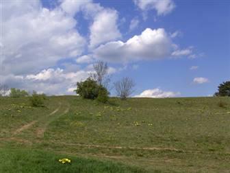 Pilgerweg durch das Saaland