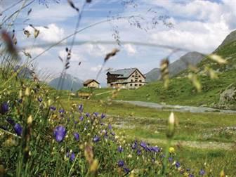 Berghütte inmitten von Bergen und Almwiesen im Sommer