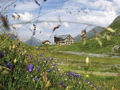 Großansicht - Berghütte inmitten von Bergen und Almwiesen im Sommer