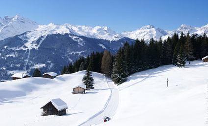 Großansicht - Winterlandschaft